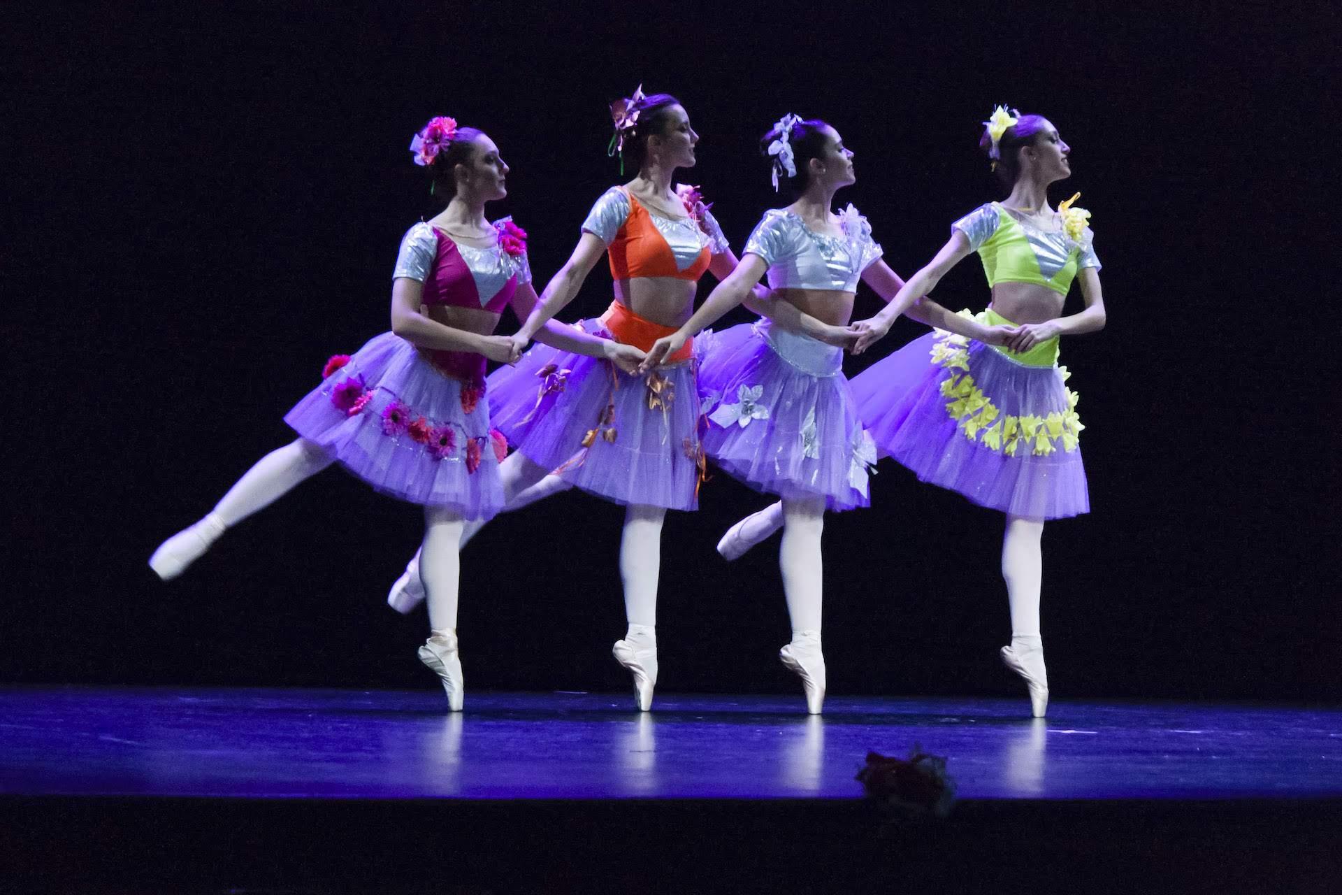 ballet profesional granada