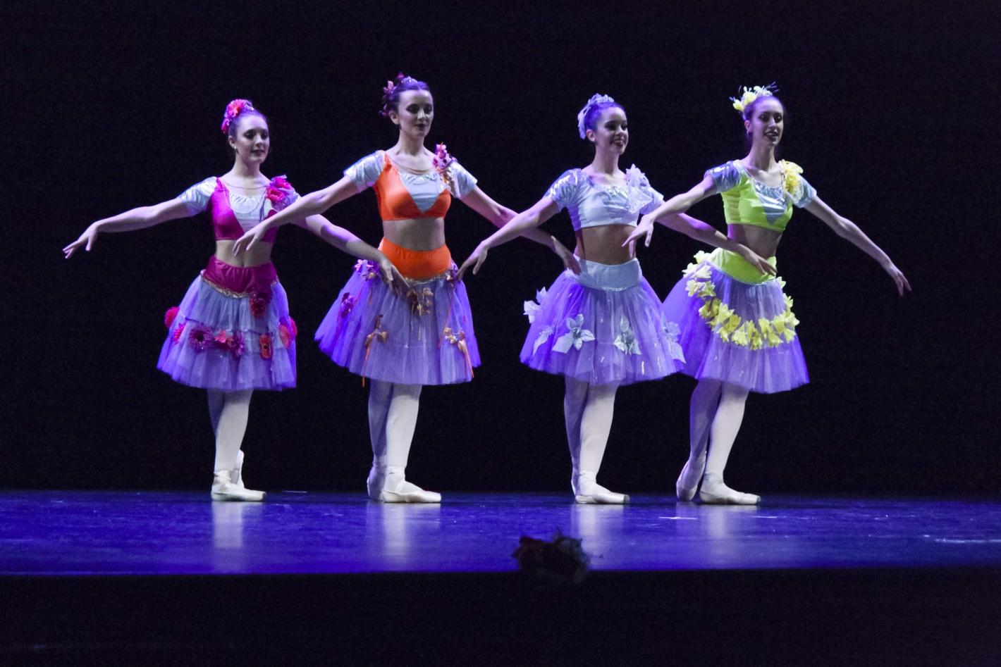 clases de ballet tiempo presente